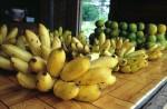 FRUI2001-Bananen  - versie 3