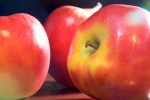 FRUI2005-Applered nr 1 _X8P6322 - versie 3