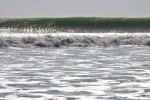 NATU2007-SILVER WAVE-VX8P9943 - versie 2