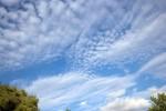 SKIE2008-NORTHERN SKY 3-VX8P3311 - versie 2