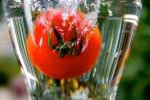 FRUI2004-Falling Tomato CRW_3754 - versie 2