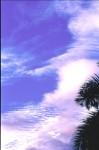 SKIE2003-Staande elegantie  - versie 2