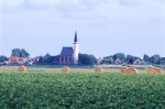 NATU2003-Hollands landschap - versie 2