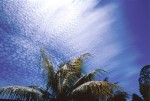 SKIE2001-Perfect sky 1