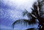 SKIE2001-Perfect sky 5  - versie 2