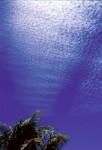 SKIE2001-Perfect sky 7 - versie 2