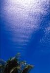 SKIE2003-Onderwaterpal 2