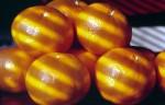 FRUI2002-Mandarijntjes 5 - versie 3