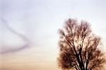 SKIE2003-Oldfashioned sky