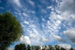 SKIE2008-SUMMERSKY 2-VX8P2783