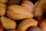 FRUI2005-Nuts 3_X8P7008 - versie 2