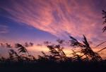 SKIE2002-Red sky 1