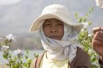 PORT2005-MOUNTAIN LADY-INDONESIA-CRW_4828 - versie 2