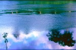 NATU2003-River-reflactions - versie 2