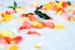 FLOW2005-Flowers on Ice_X8P7677 - versie 2