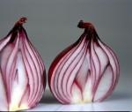 FRUI2003-Red Onion (colour) 1 - versie 2