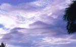 SKIE2003-Duinlucht