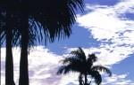 SKIE2003-Lekker fris  - versie 2