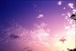 SKIE2003-Opa's darling  - versie 2