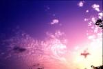 SKIE2003-Opa's darling  2 - versie 2